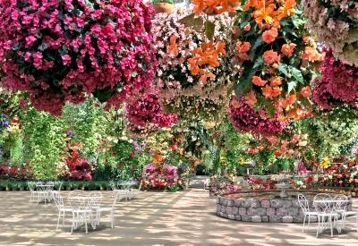 Impressie van De Orchideeën Hoeve