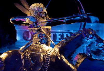 Afbeelding van Nederlands Ijsbeelden Festival