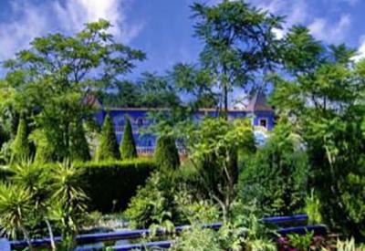 Afbeelding van Mondo Verde