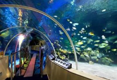 Impressie van SeaLife Scheveningen